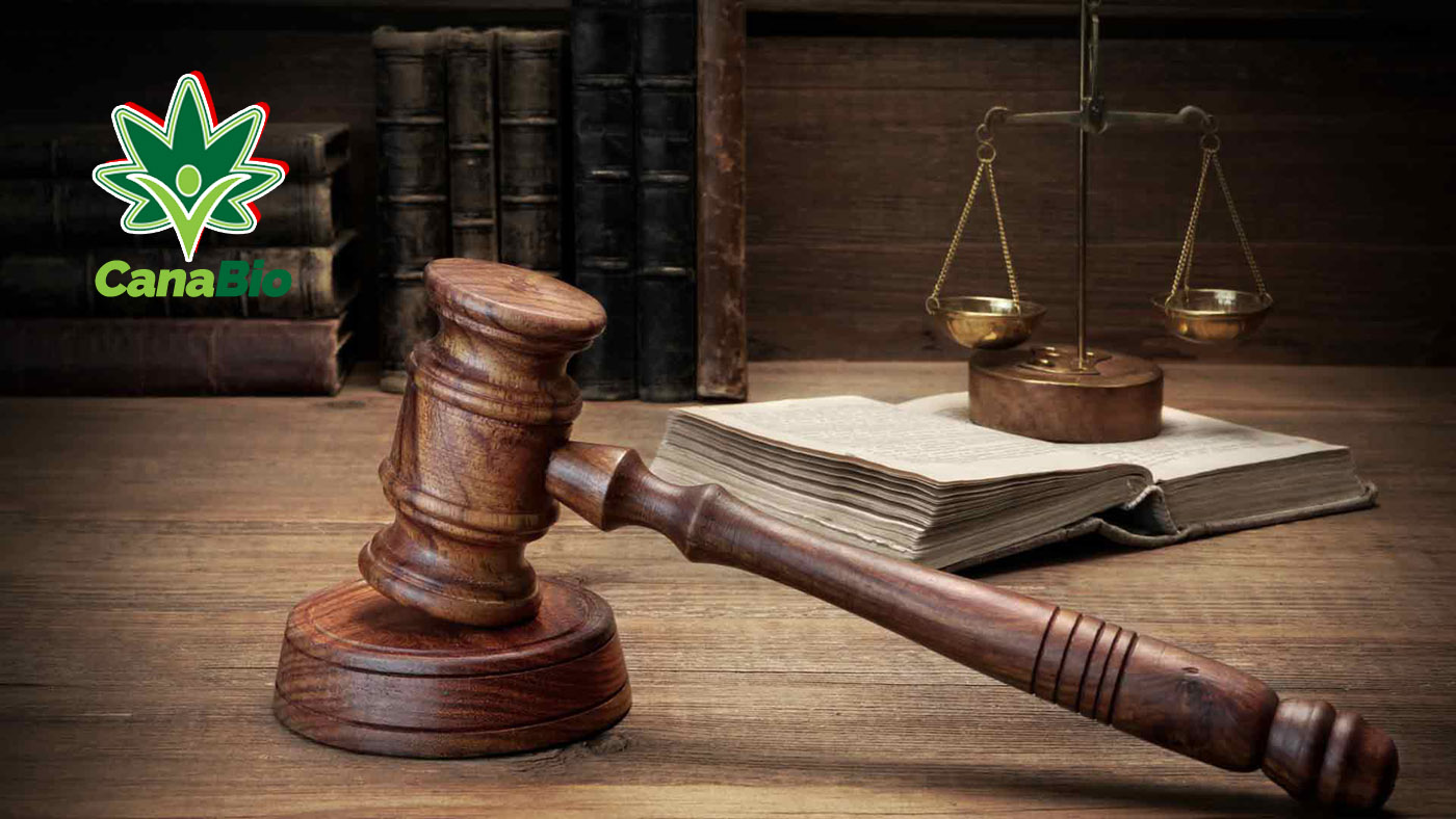 A CBD kenderolaj jogi státusza Magyarországon – Legális?!